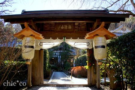 初春の鎌倉-255
