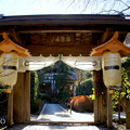 写真: 初春の鎌倉-255