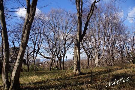 久良岐公園-134