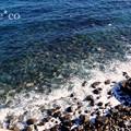 写真: DSC02039-001