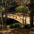 写真: 久良岐公園~4