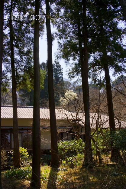 久良岐公園~6