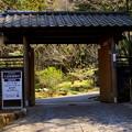 写真: 久良岐公園~9