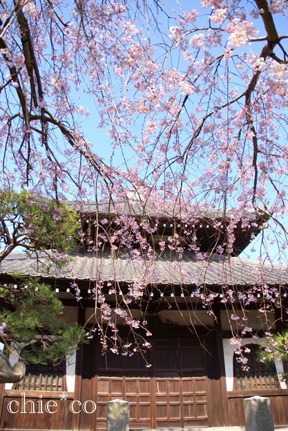 鎌倉-301