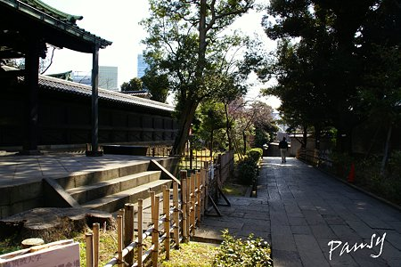 御茶ノ水・神田さんぽ~5