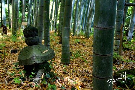 若竹と・・石灯篭と・・