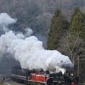 Photos: SL津和野稲荷号