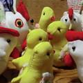 写真: 鳥たちの集い