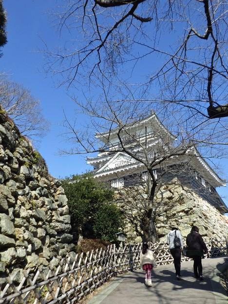 久しぶりの浜松城