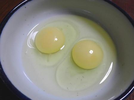 161029白卵
