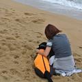 Photos: 黄昏る犬と人