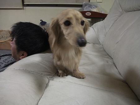 …(((((っ--)っ ソロリ…