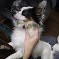 Photos: 好きなコマ♪