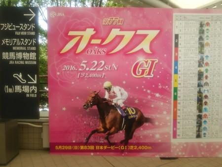 第77回 優駿牝馬