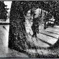 Photos: 雨の六本木
