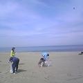 写真: 小針浜ビーチクリーン (5)