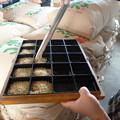 Photos: 福島の米の品質等級検査
