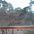 写真: 霧島温泉 国民宿舎みやま荘 部屋からの眺望