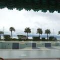 指宿シーサイドホテル ロビーからの眺望