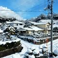 二階からの雪景色 H29,2,11