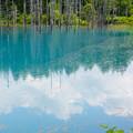 青い池-9