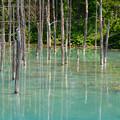 青い池-5
