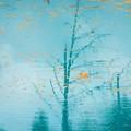 青い池-16