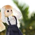 Photos: ガッ!