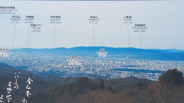 0312比叡山8一本杉3