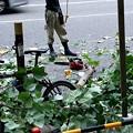 堺筋にて街路樹の伐採~あ、チェーンソー、こんな小さいのもあるねや、誠心誠意お願いしたら、ひとつくらいくれへんかな??