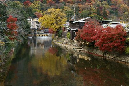 嵐山の紅葉!(101124)