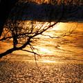 写真: 饒舌な夕日