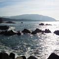 写真: 葉山の海