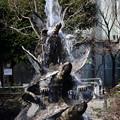 亀戸駅の亀噴水
