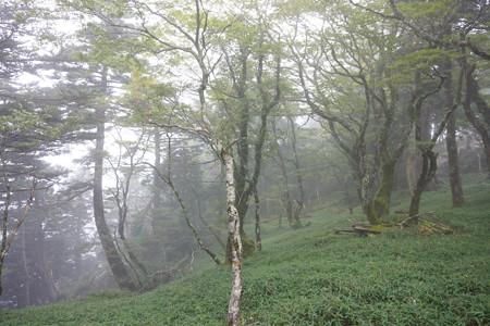 大峯山 - 06
