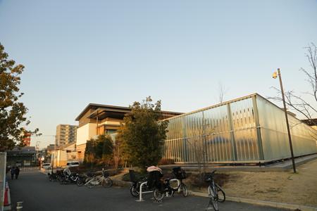 京都水族館 (8)