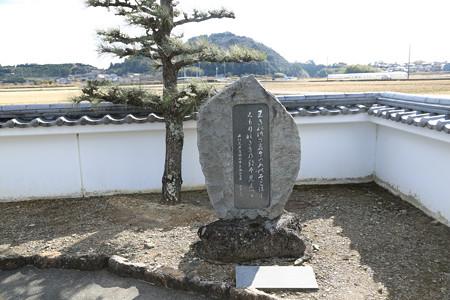 伝井伊共保出生井(共保公出生の井戸) (3)