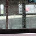 写真: 梅雨