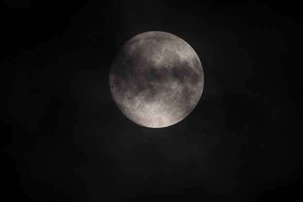 Photos: 名月