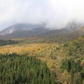 写真: 大山の紅葉