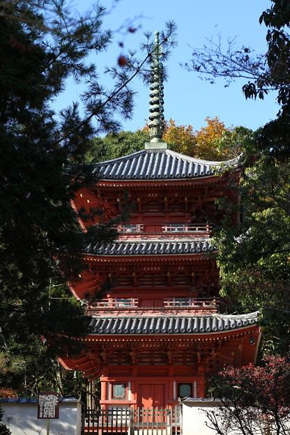Photos: 井山宝福寺