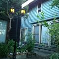 Photos: 早朝の我が家の庭2