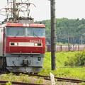 Photos: EH500-63牽引高速貨物94レ