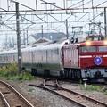 Photos: EF81 133号機牽引カシオペア紀行号8009レ