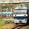 桃太郎133号代走臨高速貨物8079レ浜川崎発車