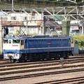 Photos: EF65 2139号機宇都宮貨物(タ)構内入換え