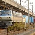 吹田のEF66 116代走牽引高速貨物4093レ
