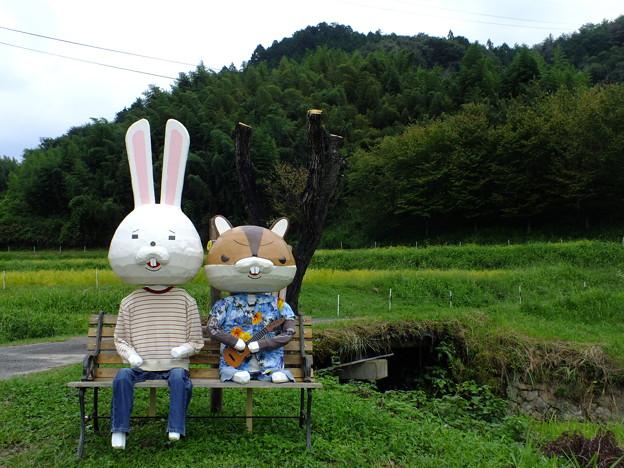 Photos: 紙うさぎ