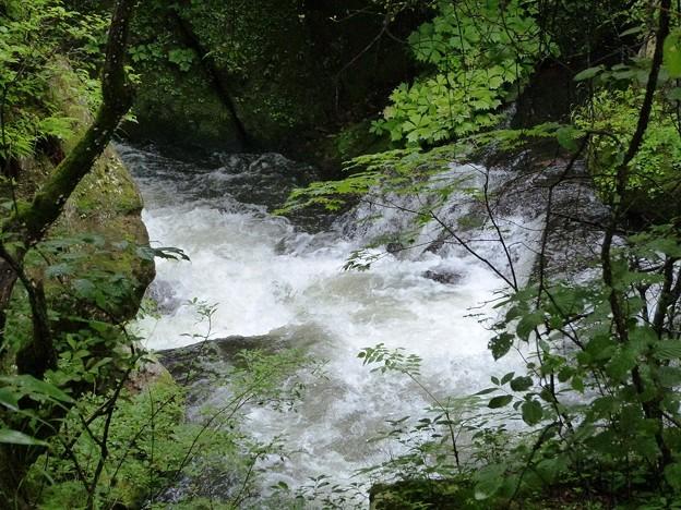 08-140719_激しい湯川の流れ(竜頭橋やや上) (2)