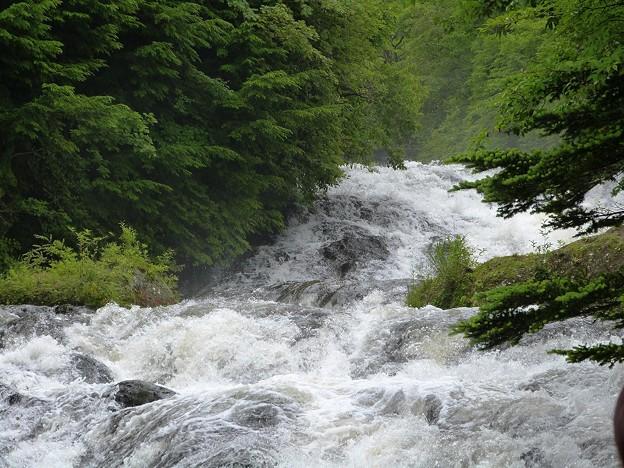 05-140719_激しい湯川の流れ(竜頭の滝上) (2)